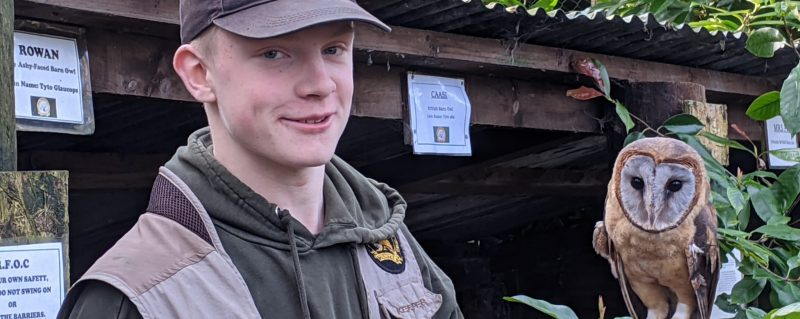 Volunteer at Rutland Falconry and Owl Centre